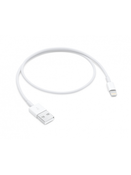 Lightning to USB Cable (0.5 m)
